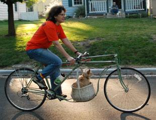 Custom Cargo Bike ride with Caesar dog